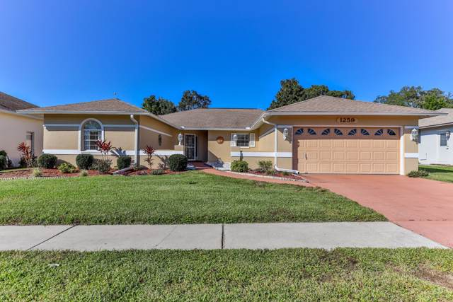 1259 Venetia Drive, Spring Hill, FL 34608 (MLS #2205539) :: The Hardy Team - RE/MAX Marketing Specialists