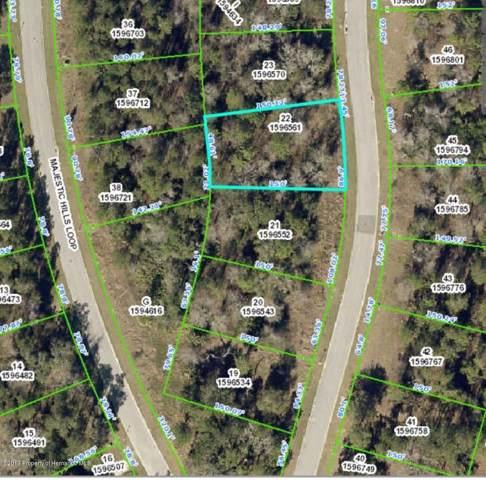 0 0 Majestic Hills Loop, Brooksville, FL 34601 (MLS #2205590) :: The Hardy Team - RE/MAX Marketing Specialists