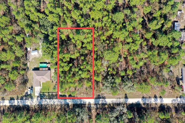 0 Sooty Tern Avenue, Brooksville, FL 34614 (MLS #2205637) :: The Hardy Team - RE/MAX Marketing Specialists