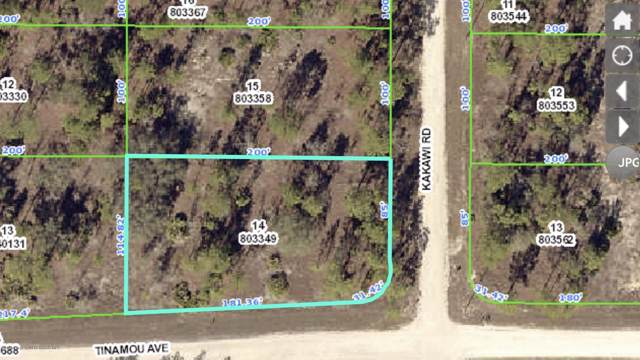 000 Tinamou Avenue, Weeki Wachee, FL 34614 (MLS #2205671) :: The Hardy Team - RE/MAX Marketing Specialists