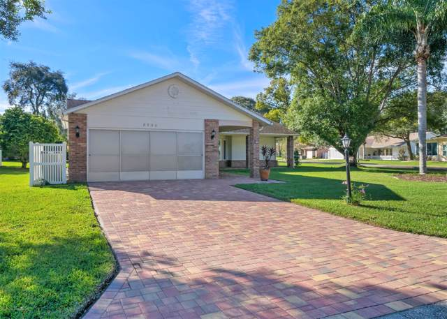 2560 Crystal Lake Drive, Spring Hill, FL 34606 (MLS #2205721) :: The Hardy Team - RE/MAX Marketing Specialists