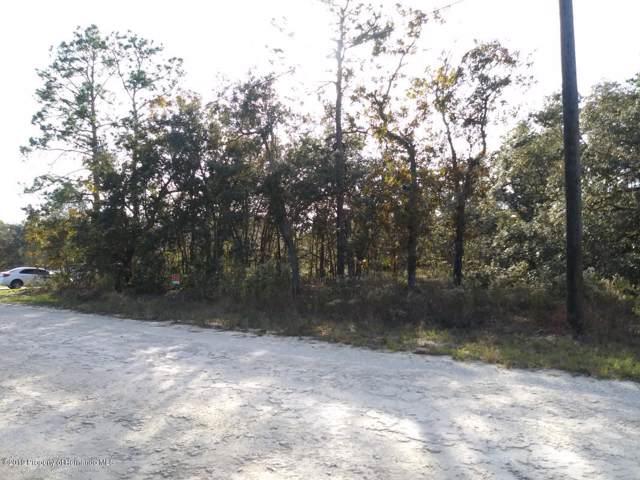 0 Duck Hawk Road, Weeki Wachee, FL 34614 (MLS #2206083) :: 54 Realty