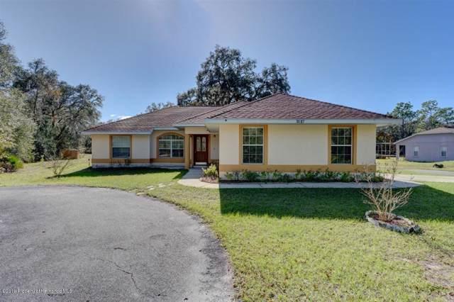 8097 Bitternut Avenue, Webster, FL 33597 (MLS #2206109) :: Premier Home Experts