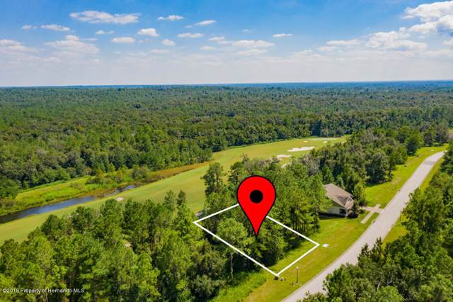 0 Southern Valley Loop, Brooksville, FL 34601 (MLS #2206226) :: The Hardy Team - RE/MAX Marketing Specialists