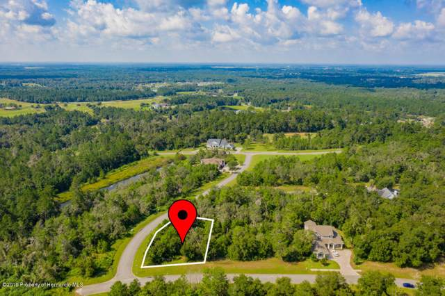 0 Evening Ray Drive, Brooksville, FL 34601 (MLS #2206227) :: The Hardy Team - RE/MAX Marketing Specialists