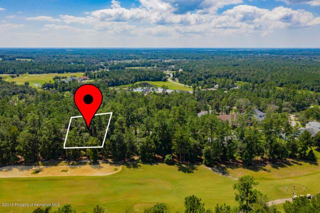 0 Sterling Bluff Way, Brooksville, FL 34601 (MLS #2206228) :: The Hardy Team - RE/MAX Marketing Specialists