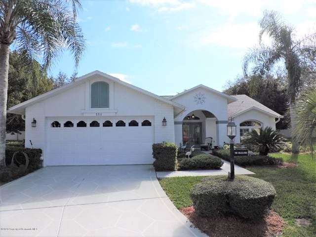 7211 Rosemont Lane, Spring Hill, FL 34606 (MLS #2206319) :: The Hardy Team - RE/MAX Marketing Specialists