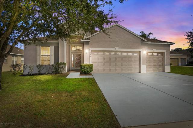 4230 Canongate Court, Spring Hill, FL 34609 (MLS #2206482) :: The Hardy Team - RE/MAX Marketing Specialists