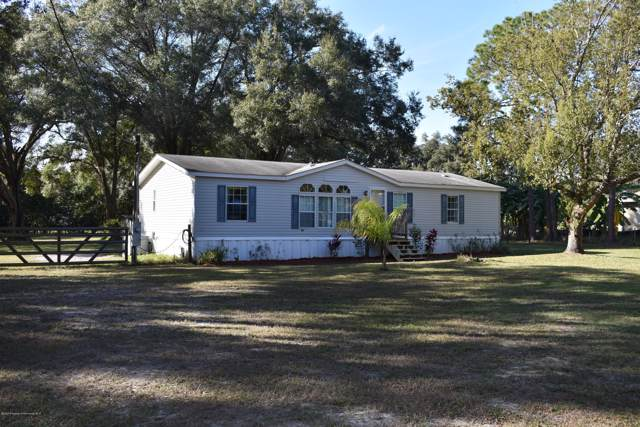 5601 Pat Road, Zephyrhills, FL 33543 (MLS #2206563) :: The Hardy Team - RE/MAX Marketing Specialists