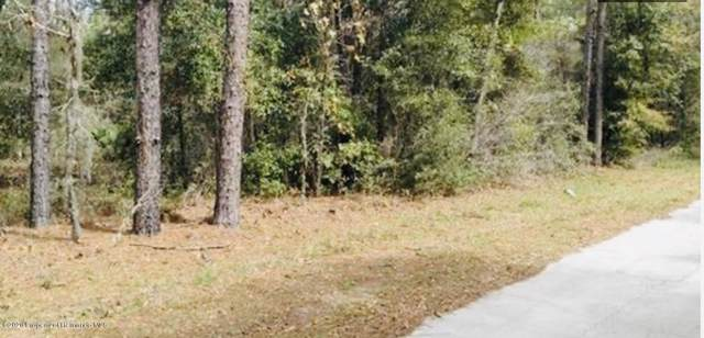 7401 W Citruswood Drive, Dunnellon, FL 34433 (MLS #2206566) :: The Hardy Team - RE/MAX Marketing Specialists