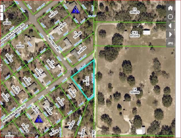 12524 Mountain Dove Road, Weeki Wachee, FL 34614 (MLS #2206570) :: 54 Realty