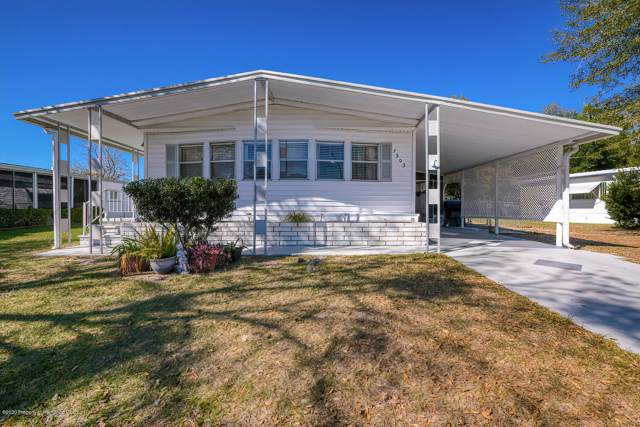 7503 Montrose Avenue, Brooksville, FL 34613 (MLS #2206668) :: The Hardy Team - RE/MAX Marketing Specialists