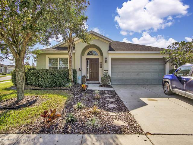 1085 China Aster Way, Brooksville, FL 34604 (MLS #2206678) :: 54 Realty