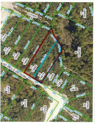 Lot 30,31 Medicine Stone Drive, Webster, FL 33597 (MLS #2207307) :: Premier Home Experts