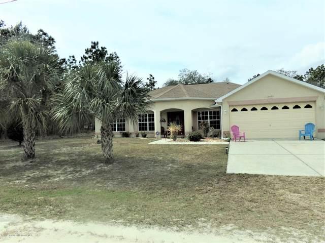 13435 Eastern Phoebe Road, Weeki Wachee, FL 34614 (MLS #2207314) :: 54 Realty