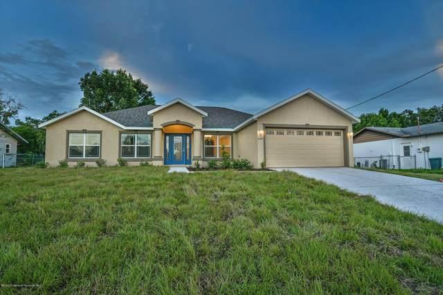 12067 Masked Duck Road, Weeki Wachee, FL 34614 (MLS #2207344) :: 54 Realty