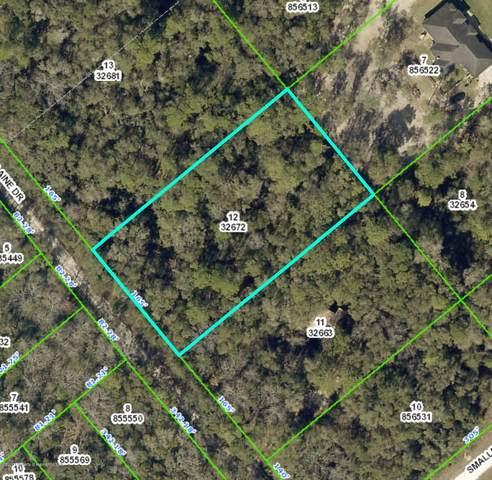 0 Elaine Drive, Ridge Manor, FL 33597 (MLS #2209433) :: Premier Home Experts