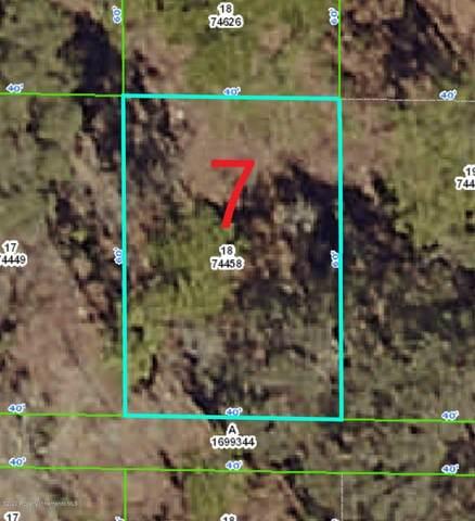 0 Rock Duck Avenue, Weeki Wachee, FL 34614 (MLS #2209524) :: Premier Home Experts
