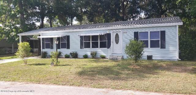 18049 Carrolwood Drive, Brooksville, FL 34604 (MLS #2209529) :: Premier Home Experts