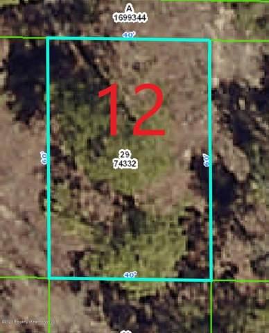 0 Rock Duck Avenue, Weeki Wachee, FL 34614 (MLS #2209532) :: Premier Home Experts