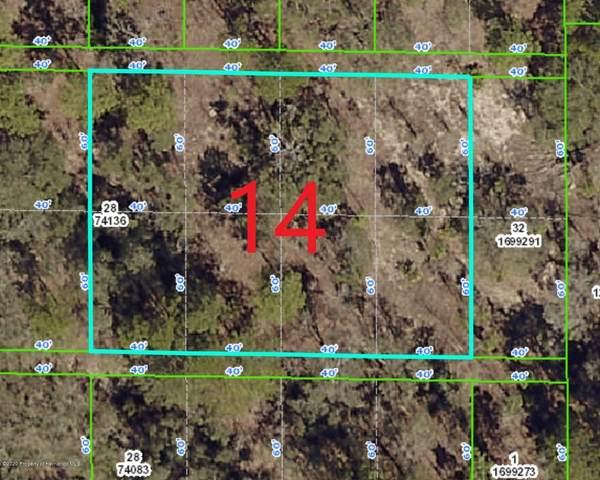 0 Rock Duck Avenue, Weeki Wachee, FL 34614 (MLS #2209534) :: Premier Home Experts
