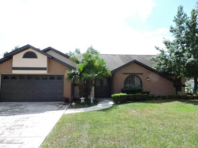 9202 Jena Road, Spring Hill, FL 34608 (MLS #2212550) :: Dalton Wade Real Estate Group