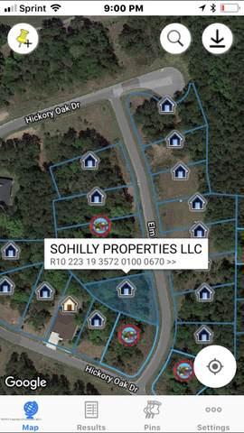 0 Elm Leaf Drive, Brooksville, FL 34601 (MLS #2212747) :: Premier Home Experts
