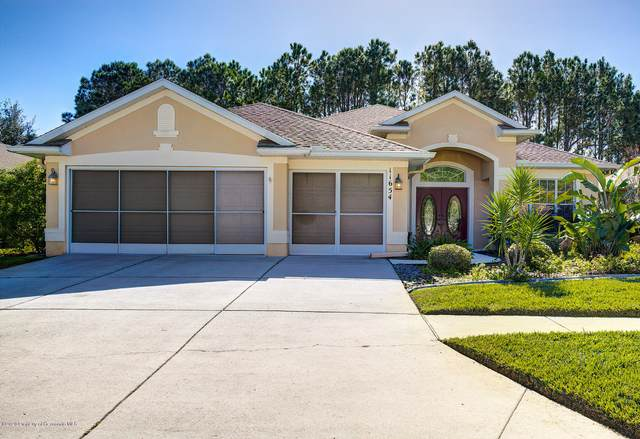 11654 Fairfield Court, Spring Hill, FL 34609 (MLS #2213305) :: Premier Home Experts