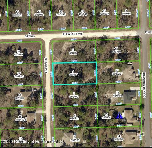 12046 Limpkin Road, Brooksville, FL 34614 (MLS #2213633) :: Premier Home Experts