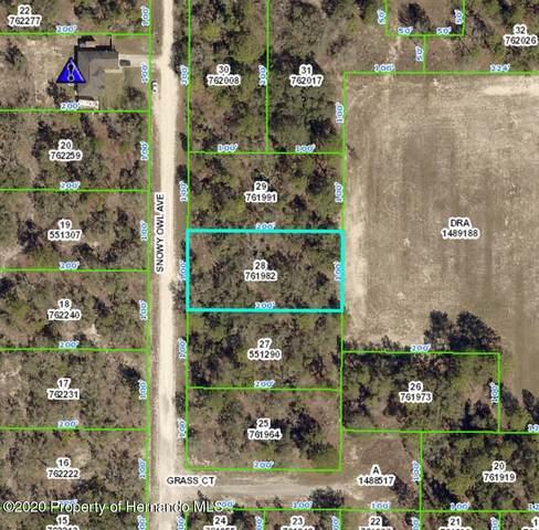 15122 Snowy Owl Avenue, Brooksville, FL 34614 (MLS #2213634) :: Premier Home Experts