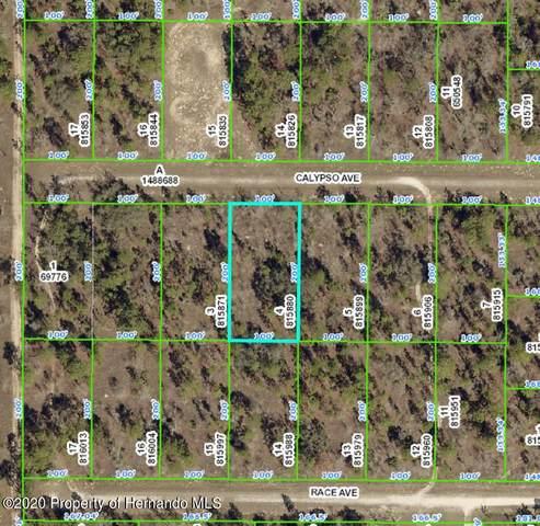 00000 Calypso Avenue, Brooksville, FL 34614 (MLS #2213636) :: Premier Home Experts