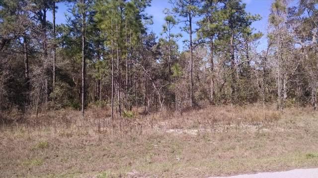0 Mt Sparrow Road, Weeki Wachee, FL 34614 (MLS #2213788) :: Premier Home Experts