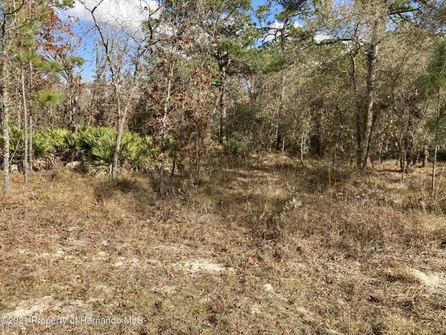 18042 Parakeet Road, Weeki Wachee, FL 34614 (MLS #2213856) :: Premier Home Experts