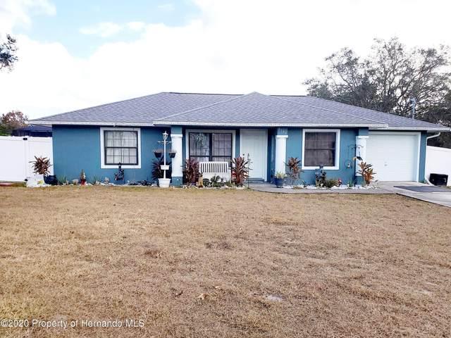 8180 Jasbow Junction, Weeki Wachee, FL 34613 (MLS #2213876) :: Premier Home Experts