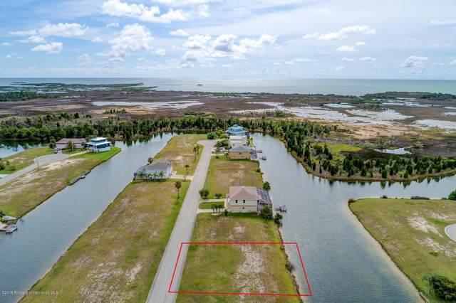 3399 Croaker Drive, Hernando Beach, FL 34607 (MLS #2213971) :: Premier Home Experts
