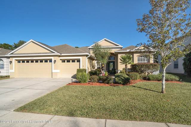 14735 Edgemere Drive, Spring Hill, FL 34609 (MLS #2214160) :: Dalton Wade Real Estate Group