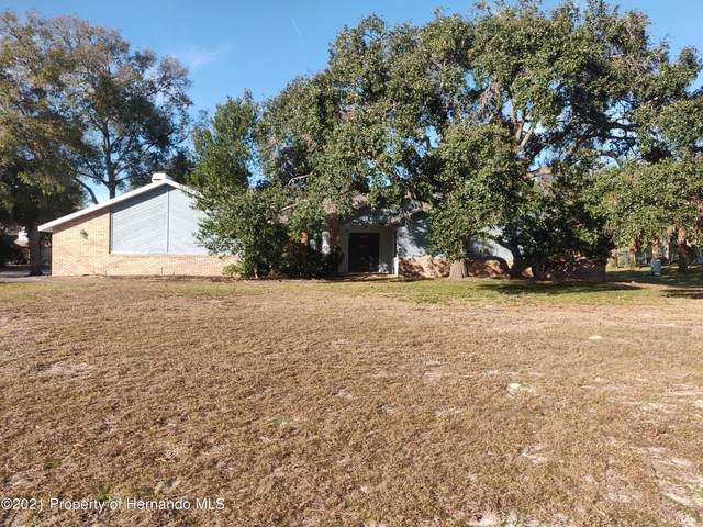 8598 Delaware Drive, Weeki Wachee, FL 34607 (MLS #2214164) :: Premier Home Experts