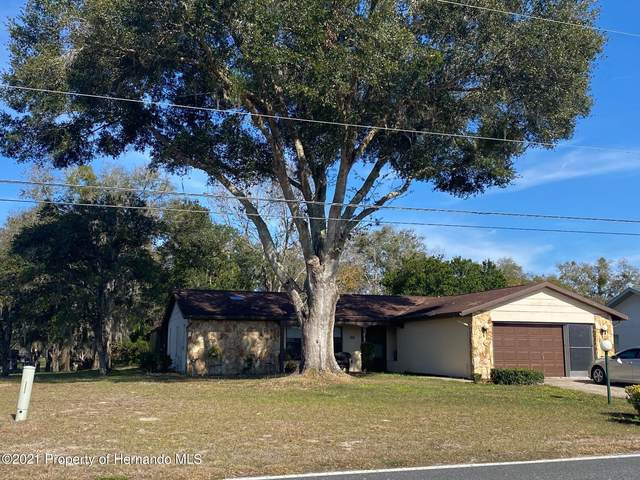 9183 E Sandpiper Drive, Inverness, FL 34450 (MLS #2214167) :: Premier Home Experts