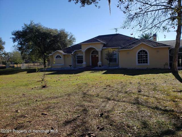 9600 Lakeview Drive, New Port Richey, FL 34654 (MLS #2214310) :: Premier Home Experts