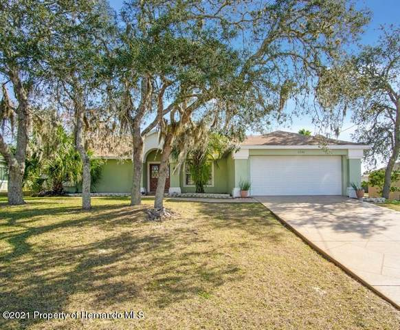 6234 India Drive, Spring Hill, FL 34608 (MLS #2214406) :: Premier Home Experts