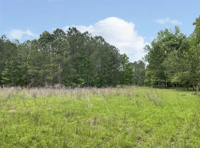 0 Hedick Place, Brooksville, FL 34601 (MLS #2215953) :: Premier Home Experts