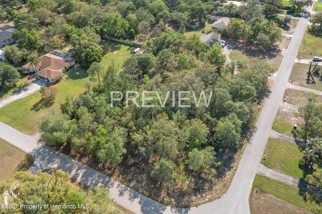 9507 Elida Road, Spring Hill, FL 34608 (MLS #2216127) :: Dalton Wade Real Estate Group