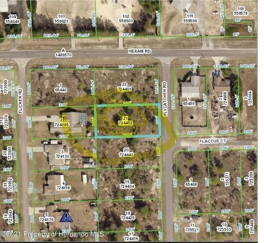 11039 Flycatcher Road, Brooksville, FL 34613 (MLS #2216182) :: Premier Home Experts