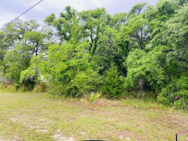 0000 Mexican Canary, Weeki Wachee, FL 34614 (MLS #2216318) :: Premier Home Experts