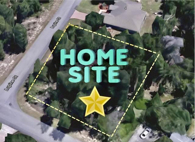 2 Lupine Street, Homosassa, FL 34446 (MLS #2216540) :: Premier Home Experts