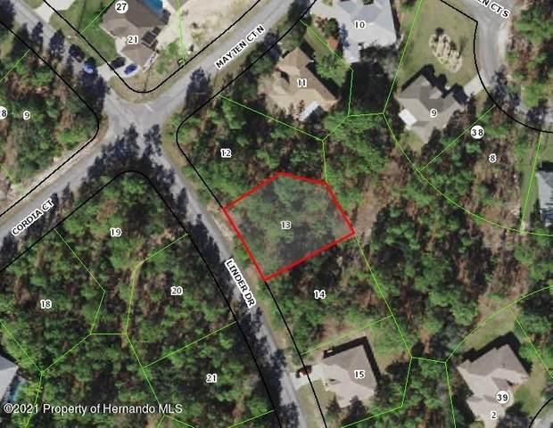 172 Linder Drive, Homosassa, FL 34446 (MLS #2216569) :: Premier Home Experts