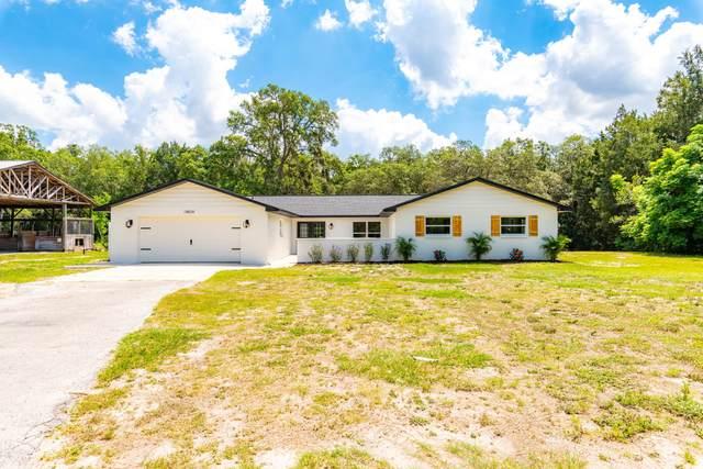 18834 Furman Drive, Spring Hill(Pasco), FL 34610 (MLS #2216594) :: Premier Home Experts