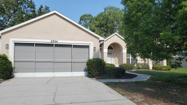 2344 Canfield Drive, Spring Hill, FL 34609 (MLS #2216649) :: Premier Home Experts