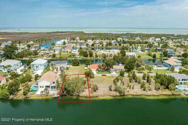 3230 Hibiscus Drive, Hernando Beach, FL 34607 (MLS #2218544) :: Premier Home Experts