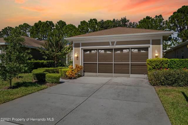 14401 Sterling Run, Brooksville, FL 34609 (MLS #2220262) :: Dalton Wade Real Estate Group